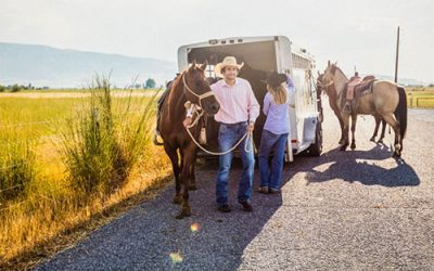 Why Is Horse Transport Important?
